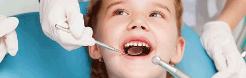 odontopedia dental